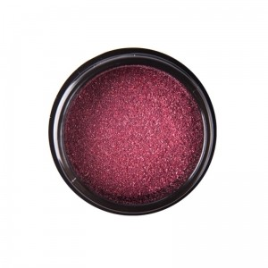 Nails Company Pyłek Holo Pink